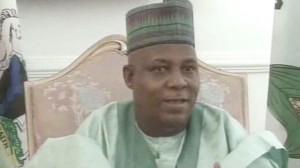 Borno to Get Independent Power Plant