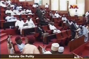 Senate President on Nigeria's Polity