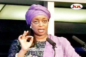 Petroleum Minister on Crude Oil Theft