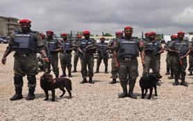 Nigerian police sniffer dogs
