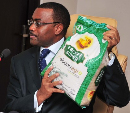 Adesina_Fertilizer