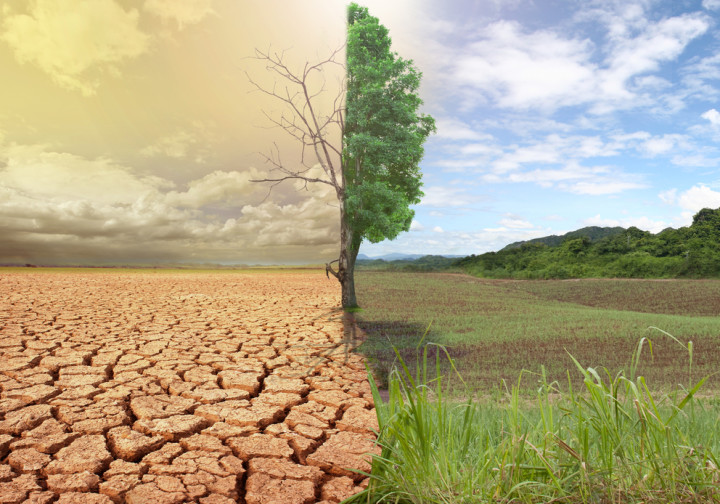 Effects of Climate Change  (Photo: Internet)