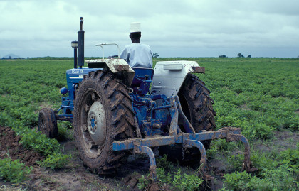 Farming-in-Nigeria