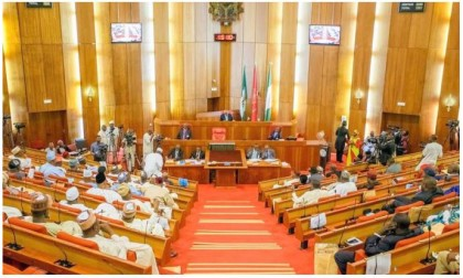 Senate Finally Passes 2016 Budget of N6.07trn