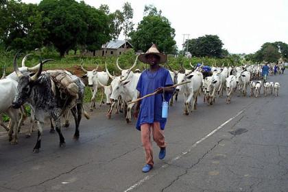 herdsmen1
