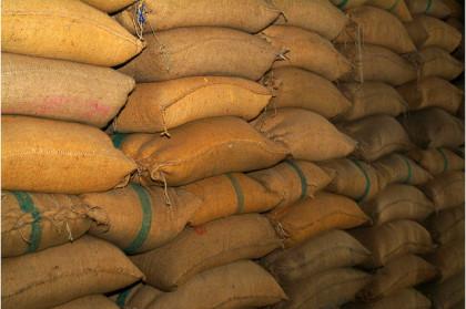 grains bags