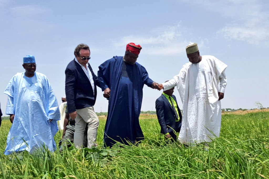 Federal Government To Meet Herdsmen Over Grazing Reserves