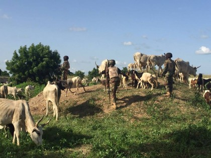 Banditry: Troops Kill 8 Bandits, Arrest 17 Collaborators In Sokoto