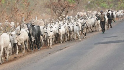 Federal Government Decisive Action On Armed Herdsmen and Others – NSA