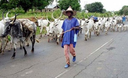 herdsmen-nigeria