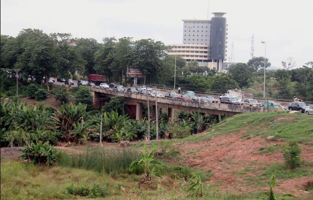 abuja-under-bridge-farm
