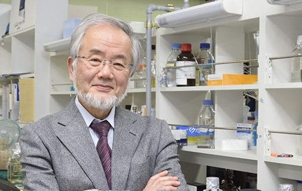 japanese-yoshinori-ohsumi-winner-noble-prize