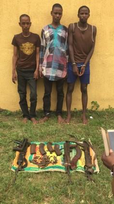 Crime: Dangote's Employee Kidnappers Arrested in Ogun