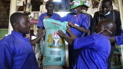 Everything You Need to Know About the Presidential Fertiliser Initiative (PFI)
