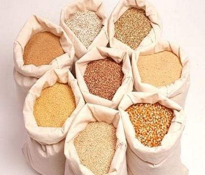 Osinbajo Holds Strategic Meeting On North-East Grains Distribution