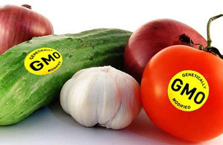 Biosafety Agency Investigates Suspected GMO Products