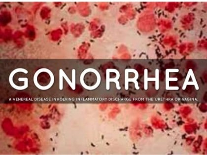 World Health Organization warns of untreatable superbug gonorrhoea found in at least 3 patients