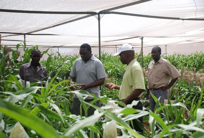 biotechnology-agriculture-economy