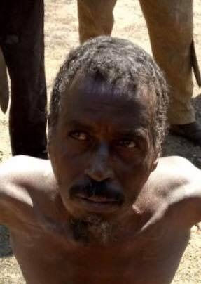BREAKING: Troops in Sambisa Captured Ameer,  4 Nuetralize and Massive Victims Rescued