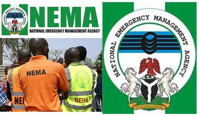 NEMA Receives 160 Nigerians From Libya