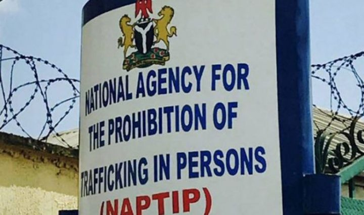 Child Abuse Suspect in NAPTIP Custody