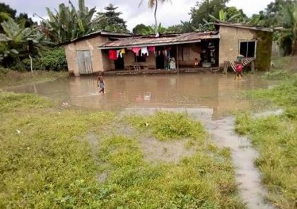 FG Seeks Partnership with Bangladesh on Flood Resistant Seed