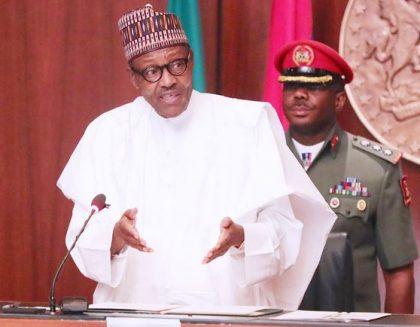 Nigeria's Democracy is Maturing – Buhari