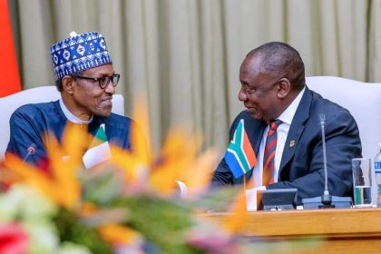 Nigeria, South Africa to Issue a Decade Visa to Businessmen, Student