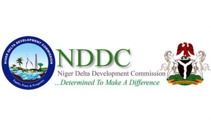 Buhari enlarges NDDC Management Committee