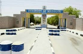 Auno: University of Maiduguri condoles community over insurgents' attack