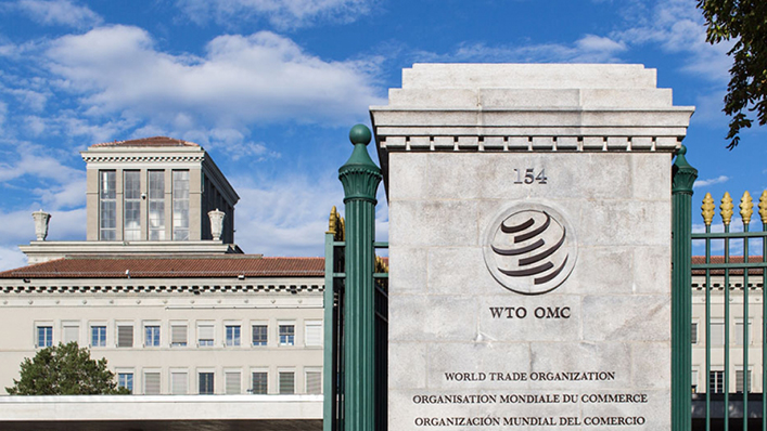 WTO Begins Second Phase of Selection For DG